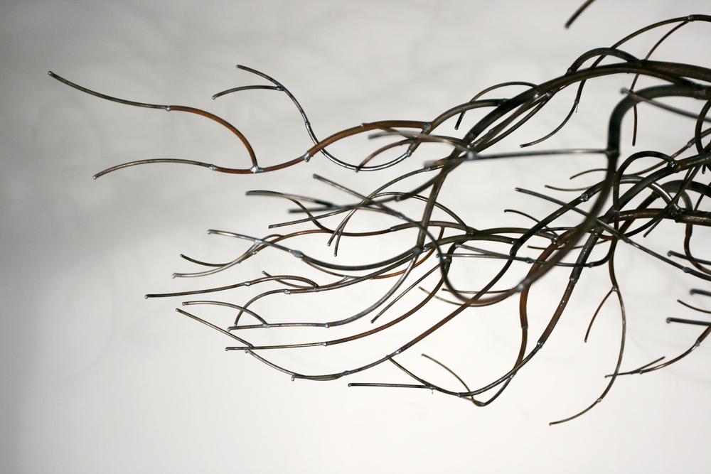 Tree of life 2010 (2).JPG