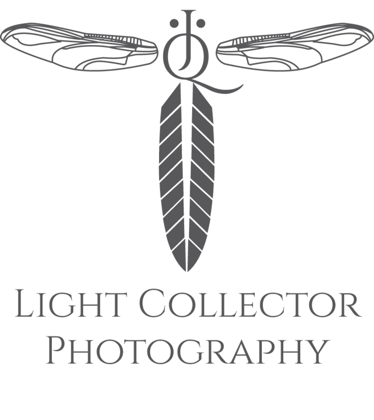 Light Collector