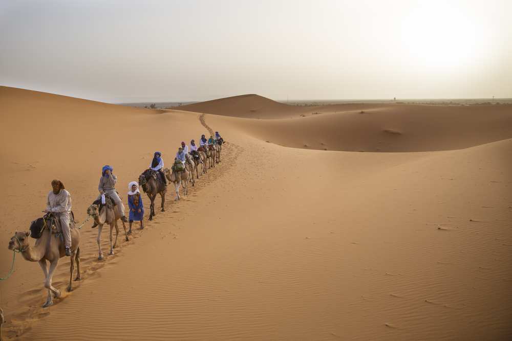 Sahara-41.jpg