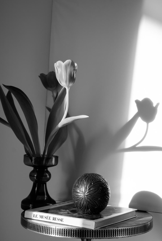 LCphotographyAp-0095.JPG