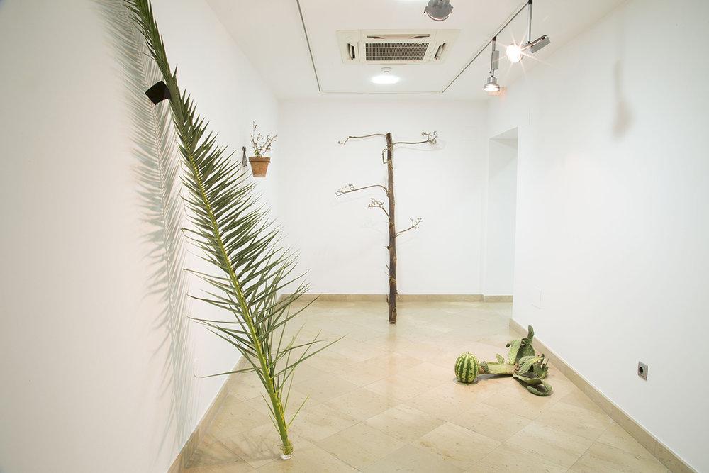 JAVIER ARCE©2016,MICROPOLÍTICA.INSTALLATION VIEW.EXHIBITION AT MUSEO CENTRO DE ARTE PEPE ESPALIÚ