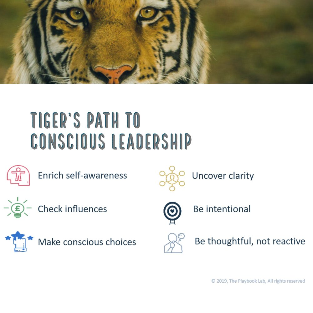 Tiger's Conscious Leadership 3.jpg