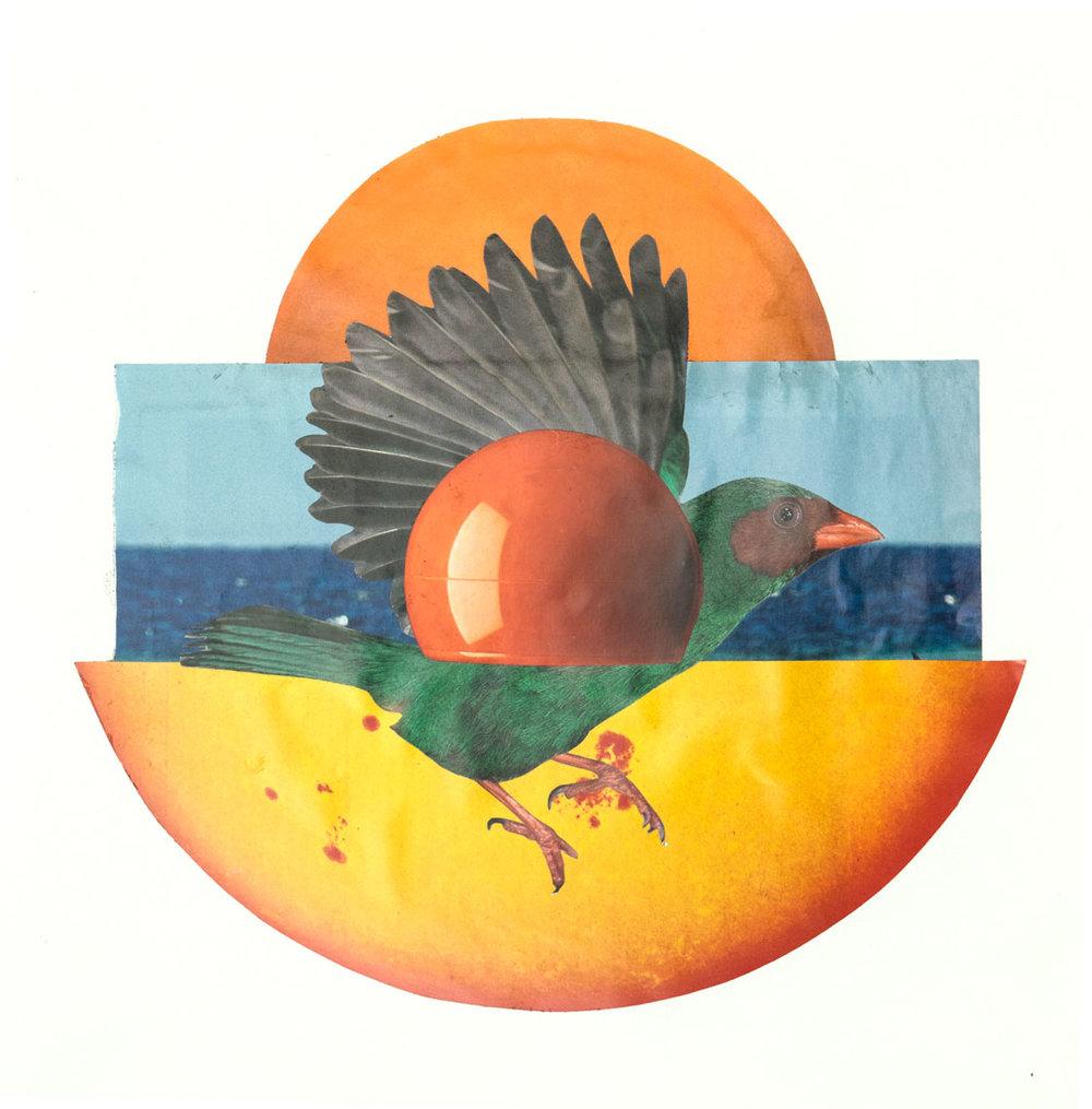 L'oiseau 21,6 x 23 cm Collage sur papier 2017