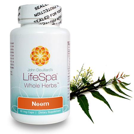 Neem Capsules (Immunity, Skin, and Gut Health) | 90 caps