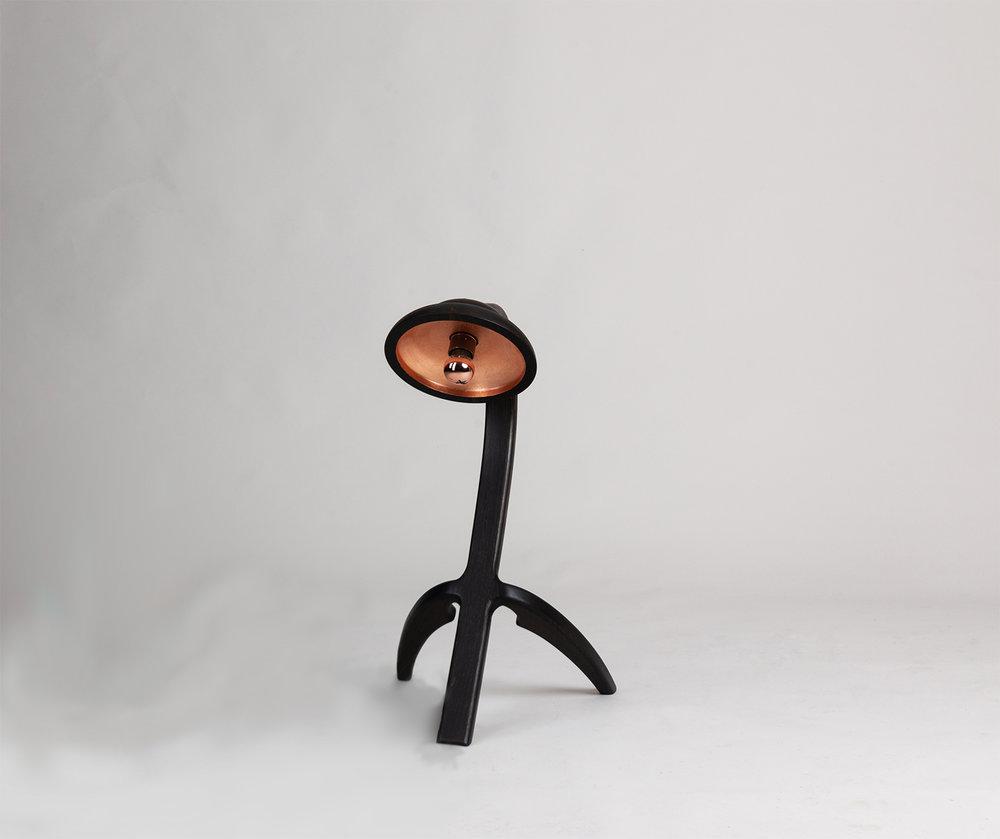 Eala Lamp by Alan Flannery Furniture Design L4.jpg