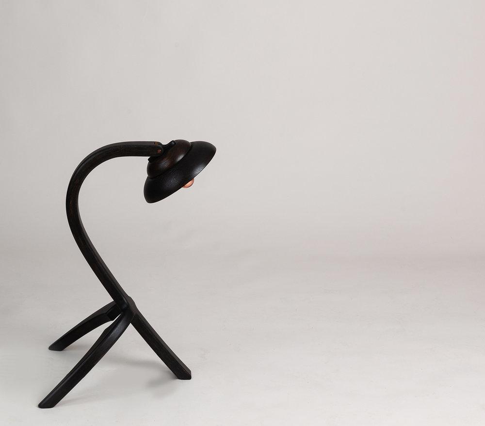 Eala Lamp by Alan Flannery Furniture Design L7.jpg