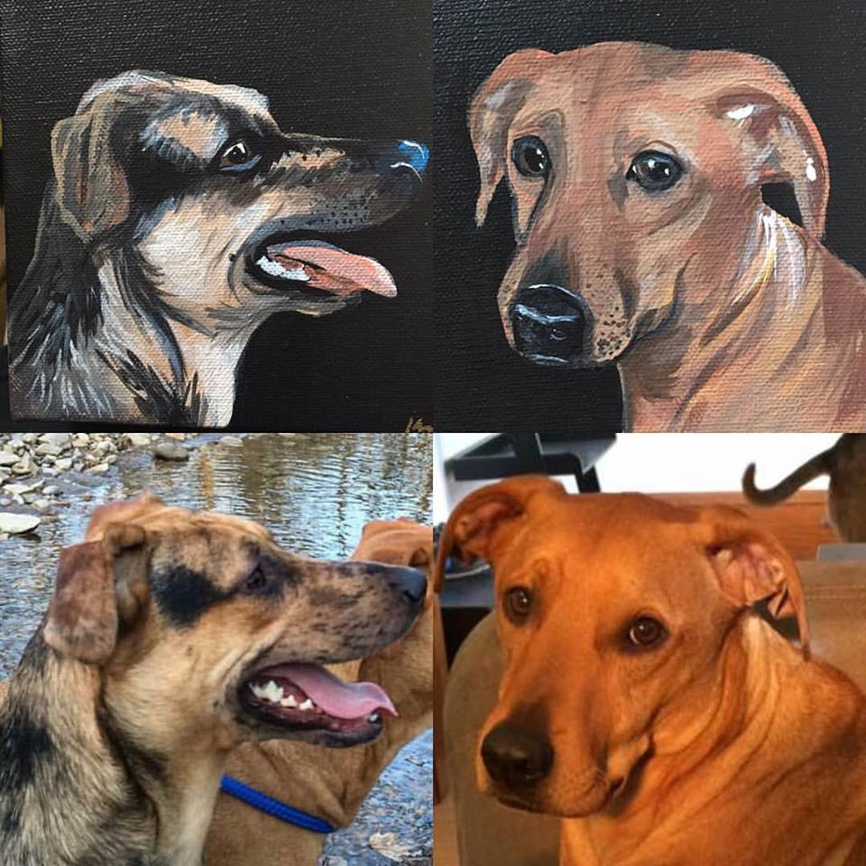 some dog portraits I did for a friend's sister, the dog on the right was challenging with such short fur and all one tone but I am happy with how they came out