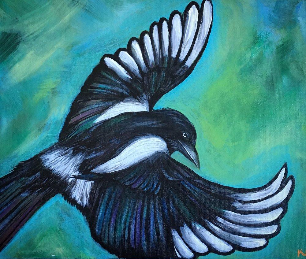 colorado magpie