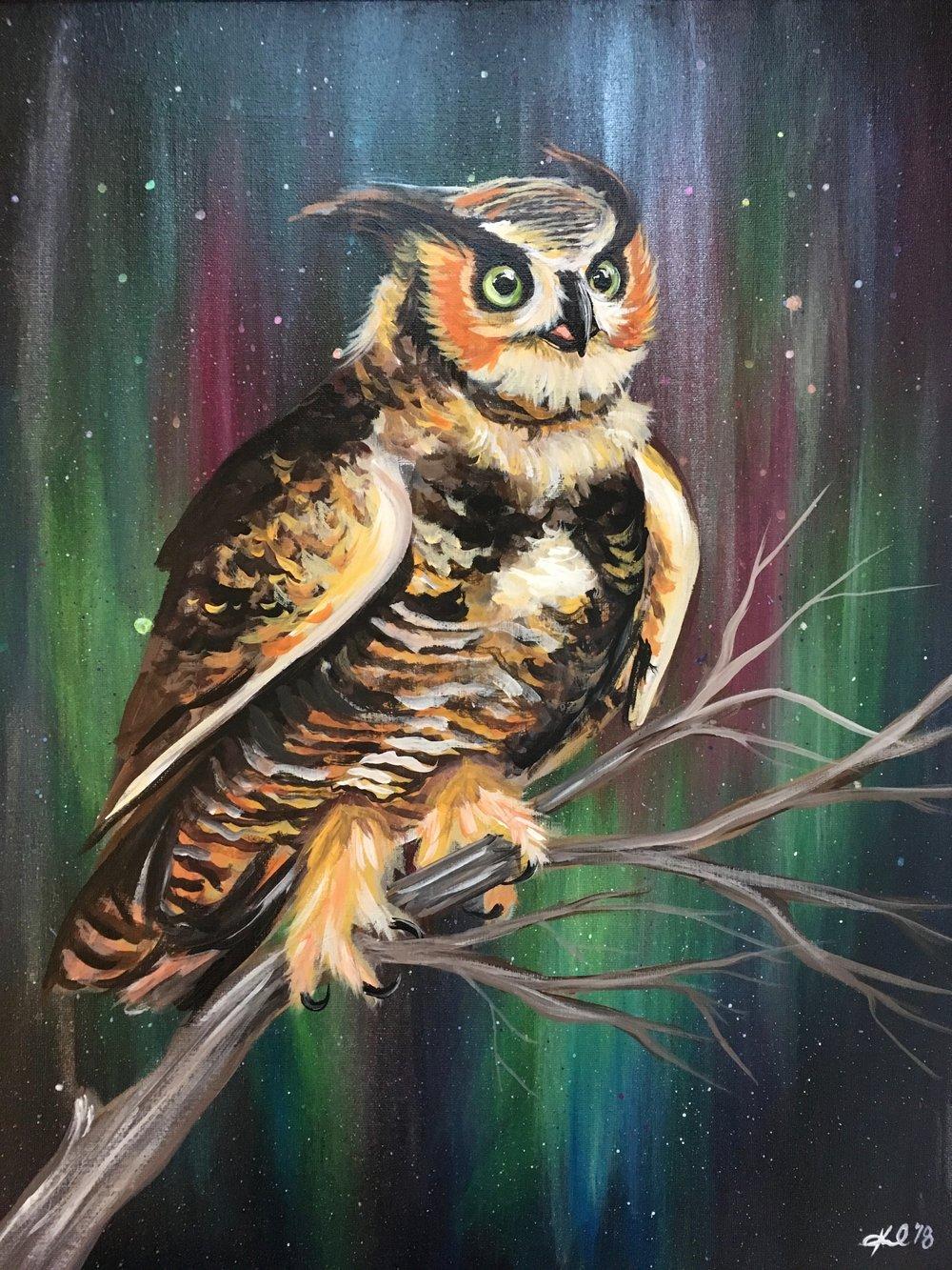 borealis horned owl