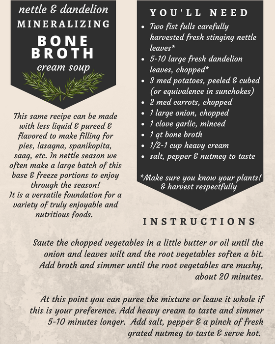 bone broth minerals nettle dandelion recipe