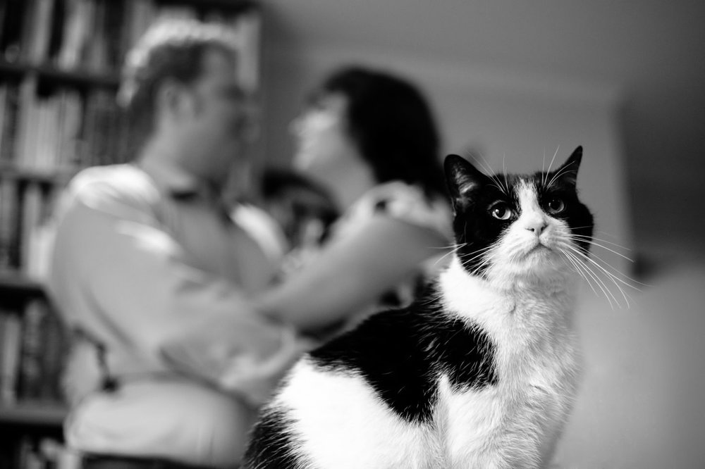 006-nyc-wedding-photographer-smitten-chickens-east-village-engagement-cats.jpg