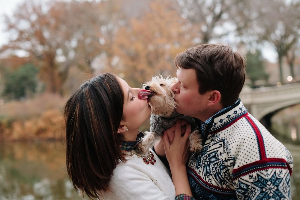 016-nyc-wedding-photographer-puppy-holiday-mini-session-fall-central-park.jpg