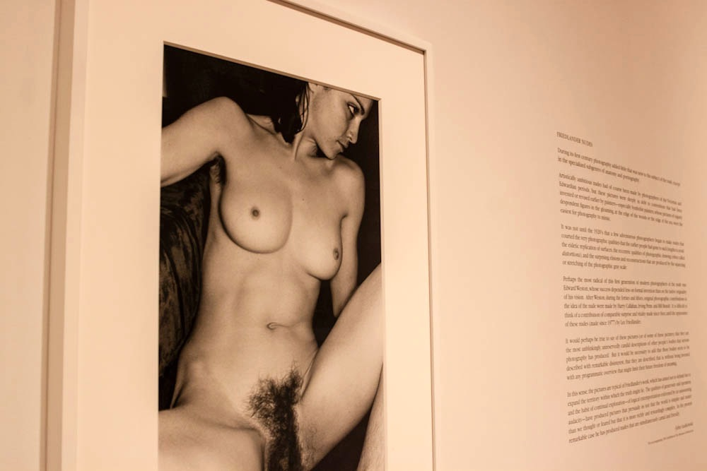 Lee-Friedlander-1-2