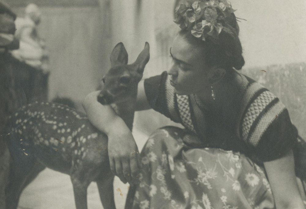 THROCKMORTON Nickolas Muray image of FRIDA WITH FAWN 1939 gelatin silver print 4.5x6 (2)