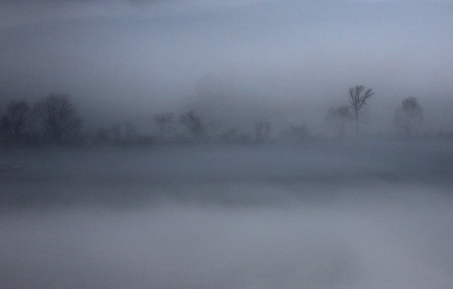Fog - Carolyn Marks Blackwood
