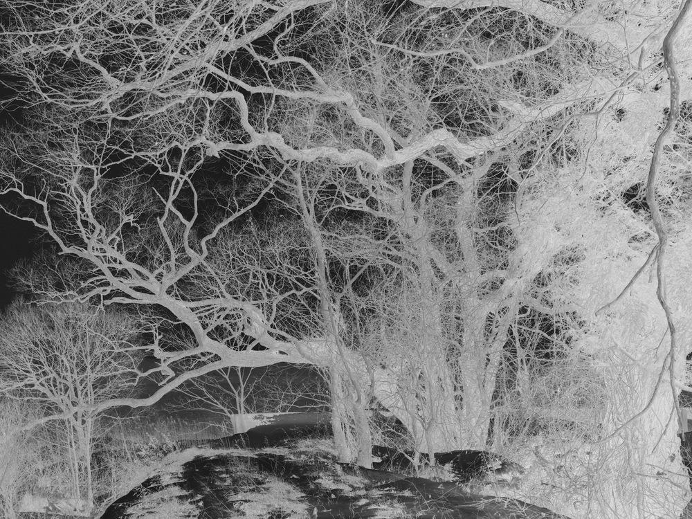 Seto Masato - Untitled