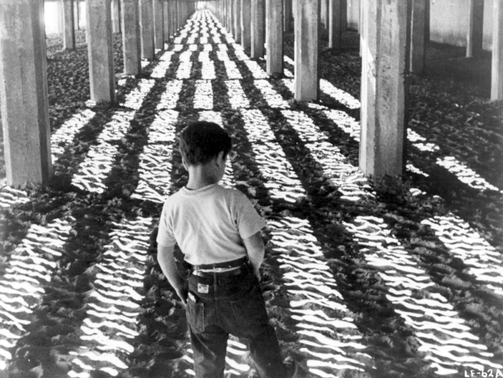 Little Fugitive, production still, 1953. Gelatin silver print, 8 x 10 in. (20.3 x 25.4 cm). A Morris Engel Production. Photo: Joseph Burstyn/Photofest; © Joseph Burstyn, Inc.; © Morris Engel