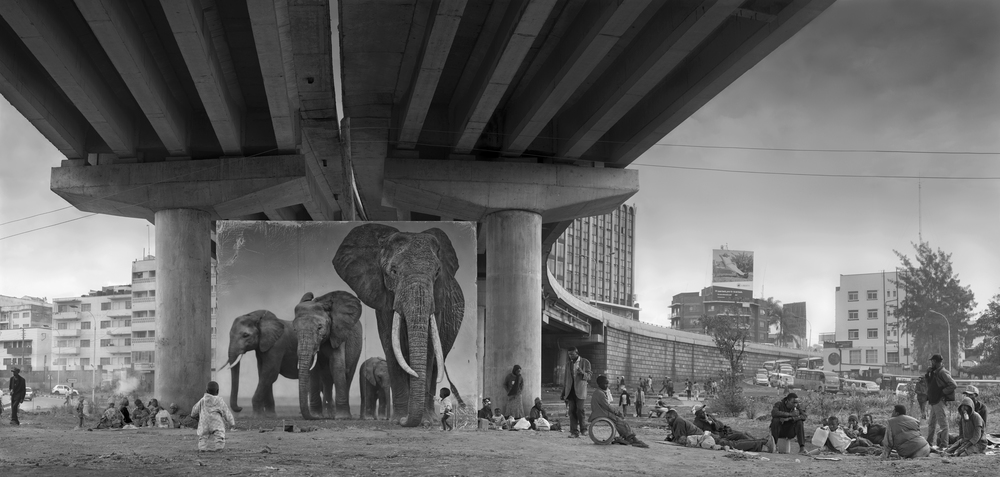 UNDERPASS-WITH-ELEPHANTS-3800px