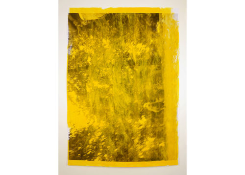 Image above: ©DAVID THOMAS, Impermanences, Dogs of London (Golden Yellow), 2015, Acrylic and photocopy on paper