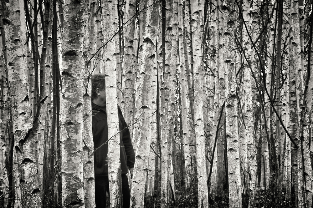 """ The Birches"" , Skaneateles, NY, 2012 © Ted Anderson"