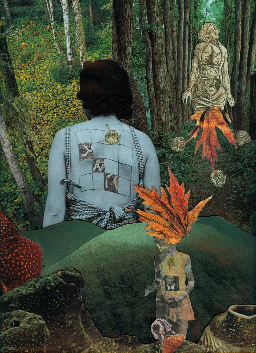 Agnieszka Sosnowska, Danuta, Collage, 2004