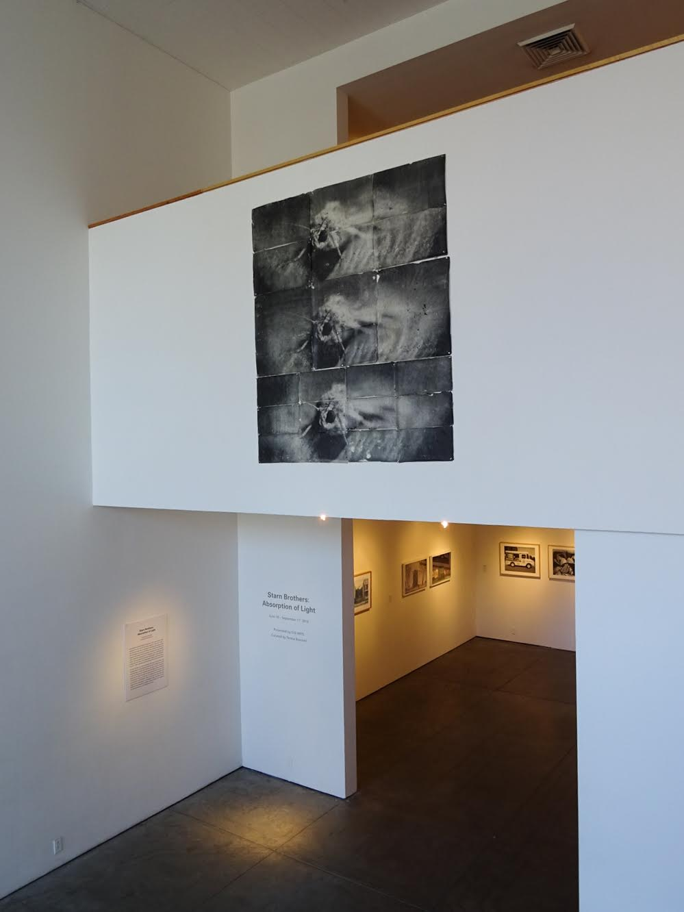 Attracted to Light 2 (triple), 2002, Sulfur toned silver prints hand-coated on Thai mulberry paper, 68 X 63 inches