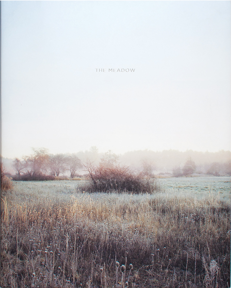The Meadow by Barbara Bosworth and Margot Anne Kelley. Copyright © 2015 Radius Books. www.radiusbooks.org