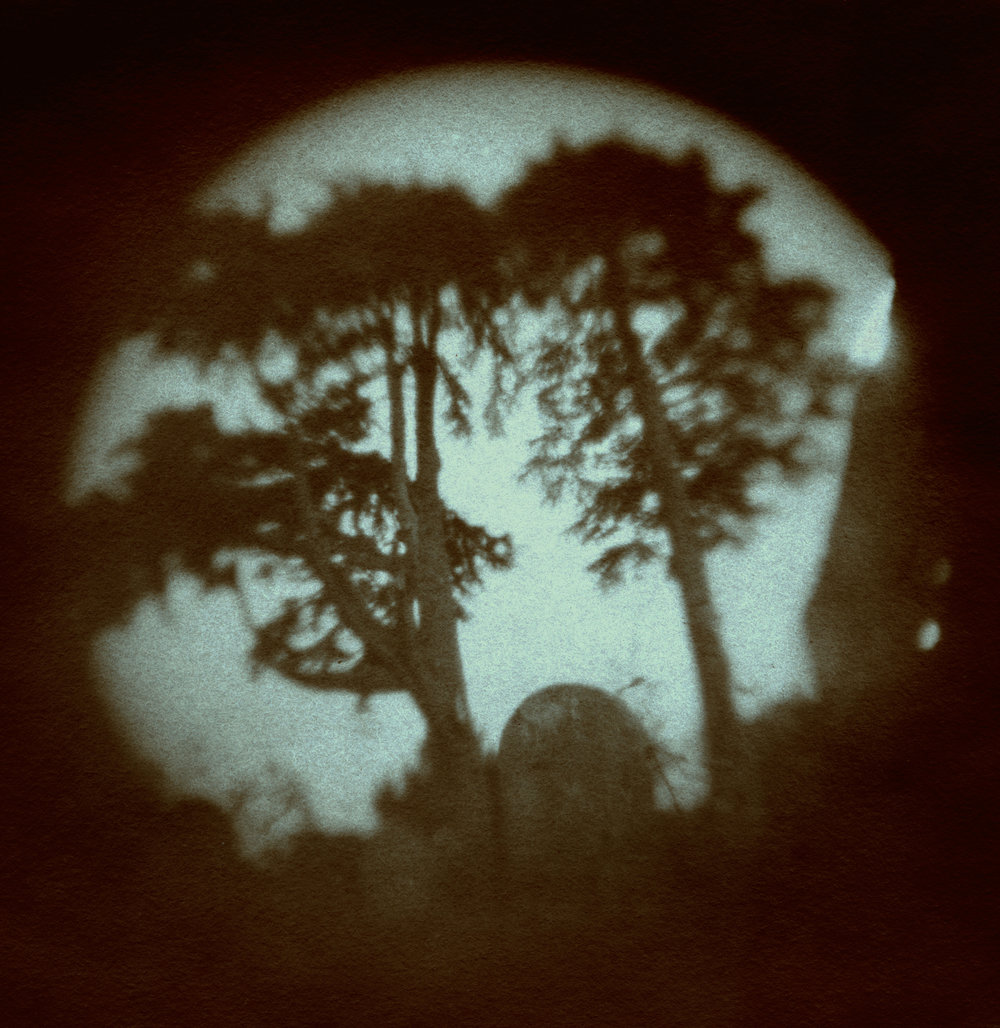France Scully Osterman & Mark Osterman, View from Talbot's Grave, 2012, Pigment print from photogenic drawing, 30x30 inches