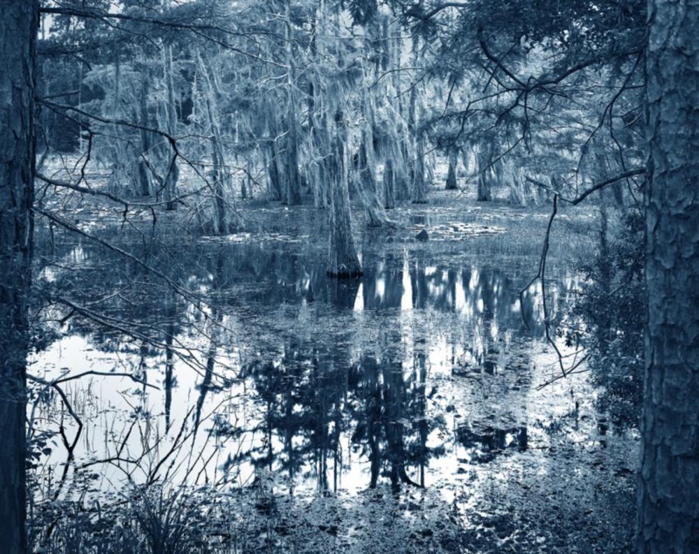 ©Yojiro Imasaka, Blue Bayou #9, 2016 Exhibition: Blue Bayou, toned gelatin silver print