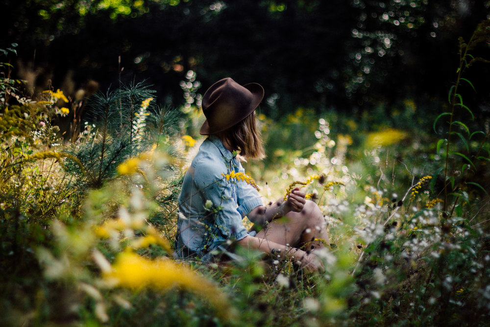 Meadow, Lulu Lovering