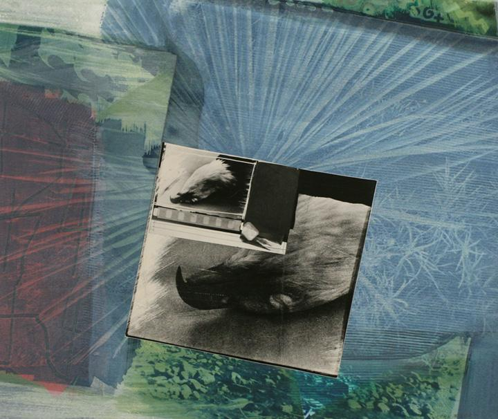 Image courtesy of Bruce Silverstein Gallery, John Wood  Eagle Pelt , 1988     Collage and cyanotype 14 x 16 1/4 in