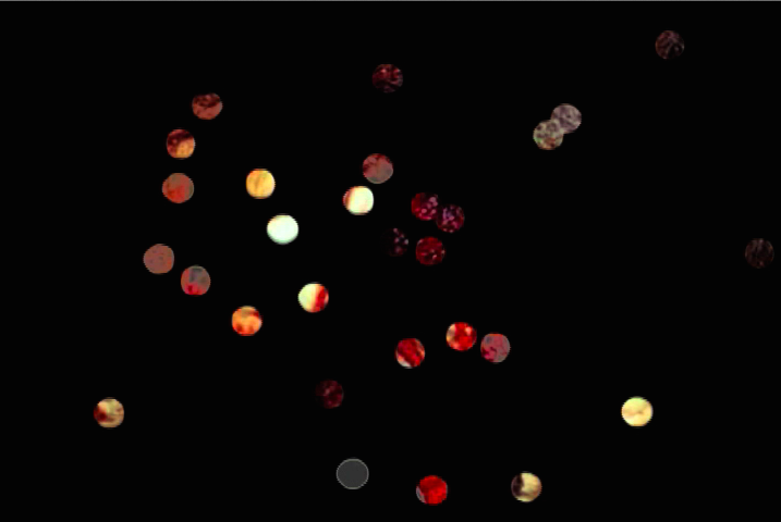 Stills from Digital Video Effect:  Seth Price, Spills, video, 2004, 11:57 min., color, sound. Courtesy of the artist and Petzel gallery, New York.
