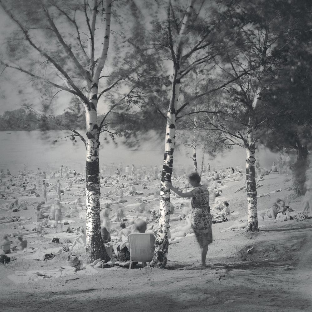 Alexey Titarenko. Birch Trees, Lake near Ozerki Metro Station, St. Petersburg,1999. Gelatin silver print. 16 x 16 in. (40.6 x 40.6 cm)