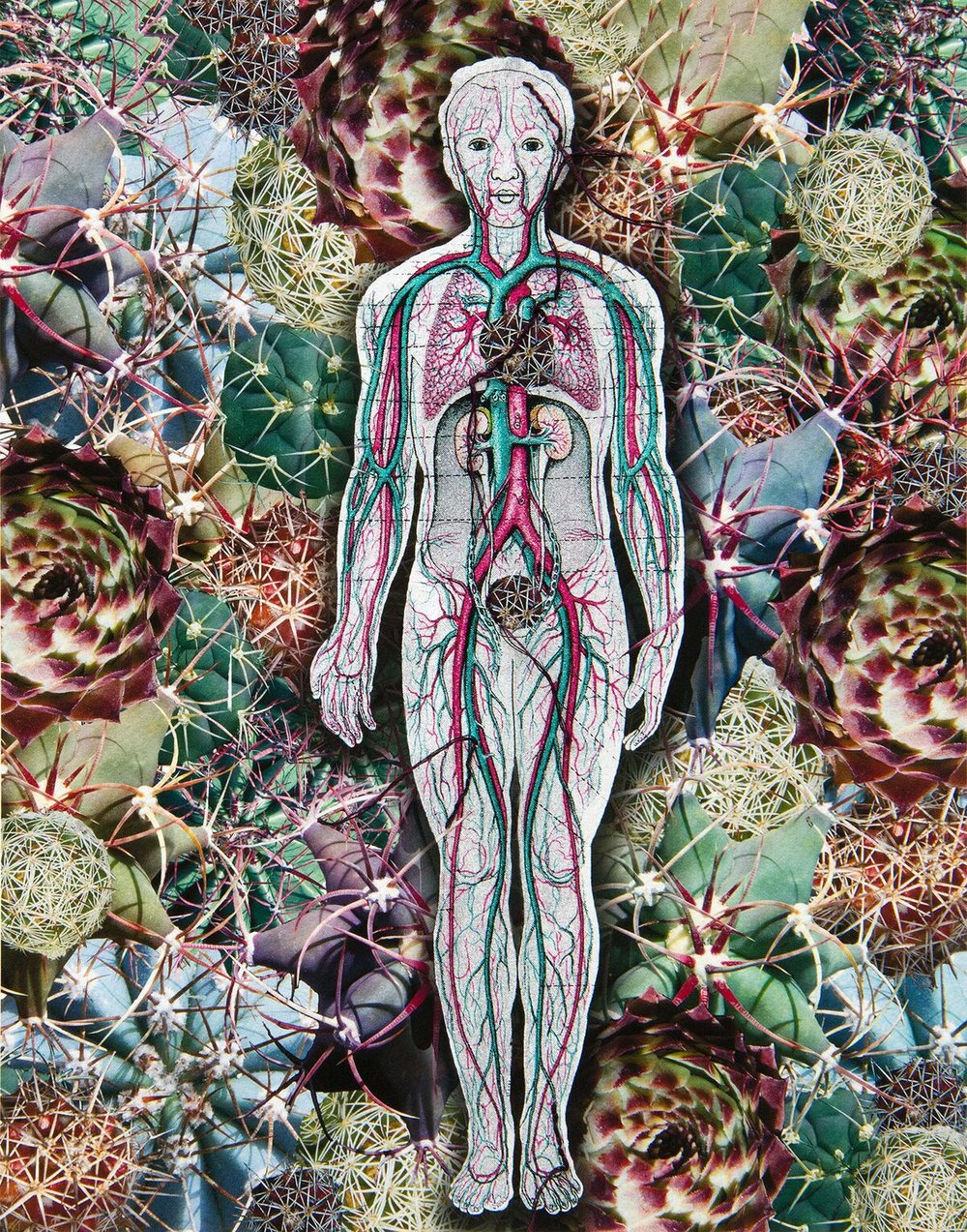 Embittered Heart, Mujar Sula ©Sandra Klein