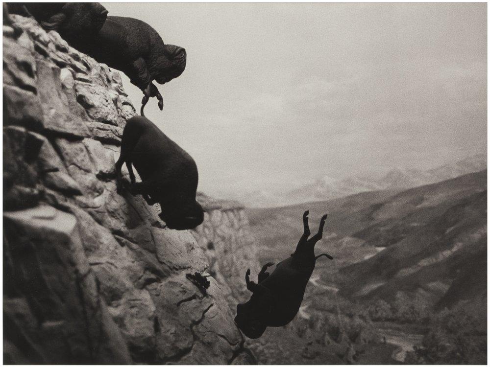 DAVID WOJNAROWICZ Untitled (Buffalos), 1988-1989 Silver gelatin print