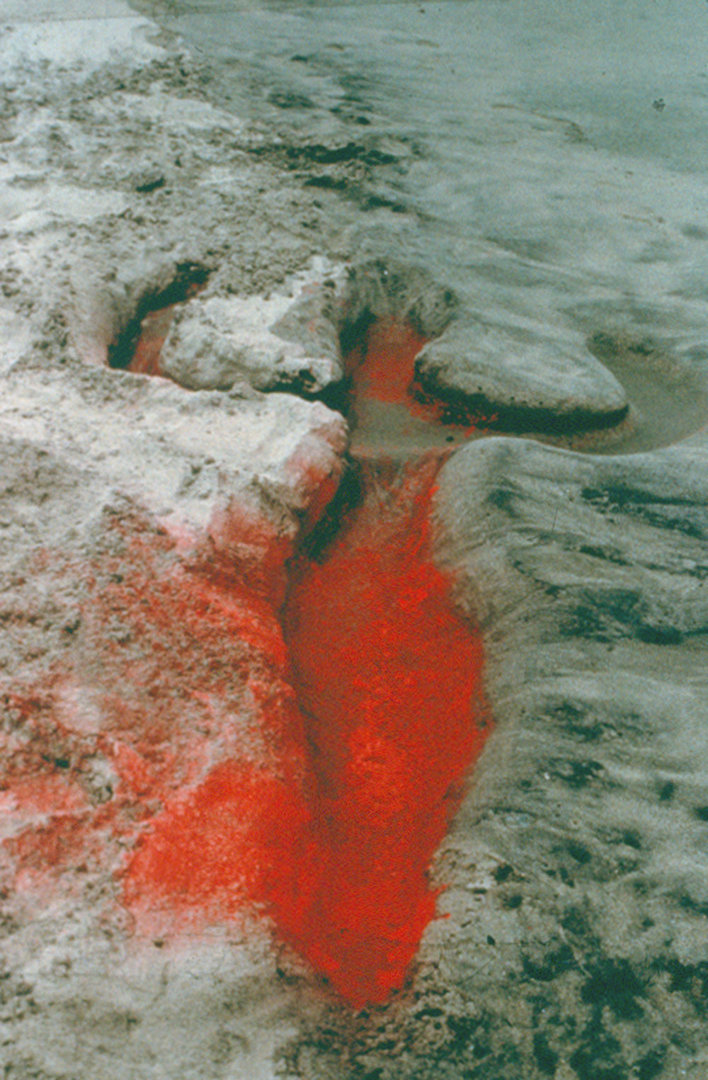Untitled: Silueta Series, Mexico , 1976 Photograph © The Estate of Ana Mendieta Collection, LLC,Courtesy Galerie Lelong, New York