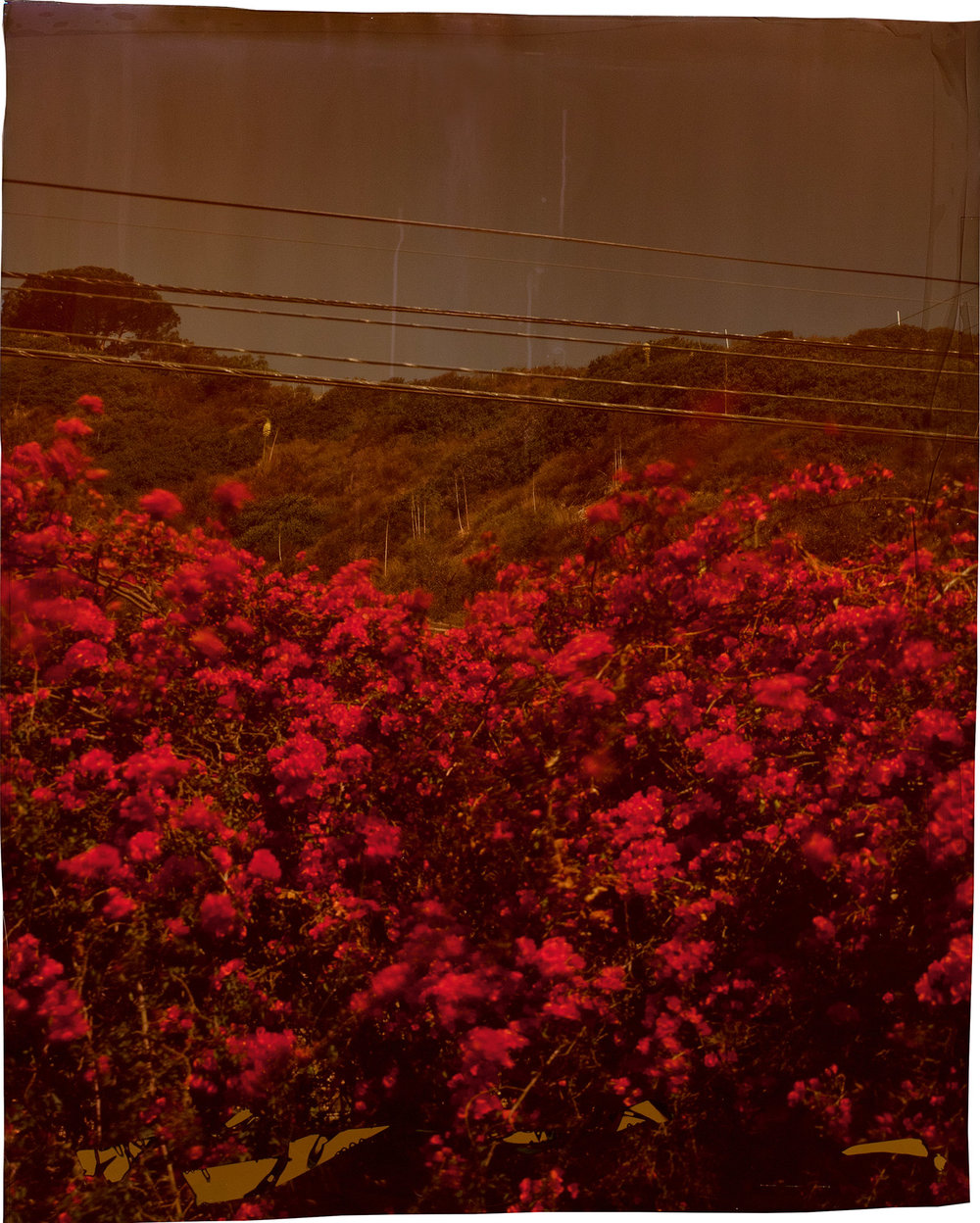 John Chiara,  Topanga Canyon Boulevard at Pacific Coast Highway, Los   Angeles, 2012 ; from  John Chiara: California