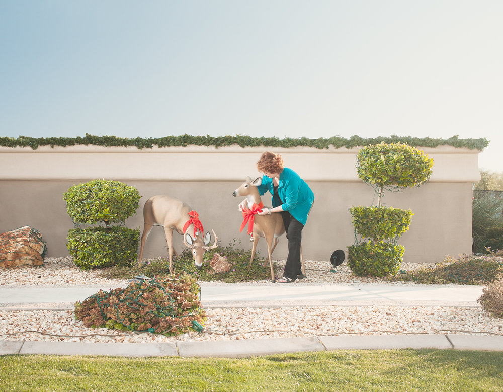 Domesticated Reindeer.  Surprise, AZ . 2012 © Jesse Rieser