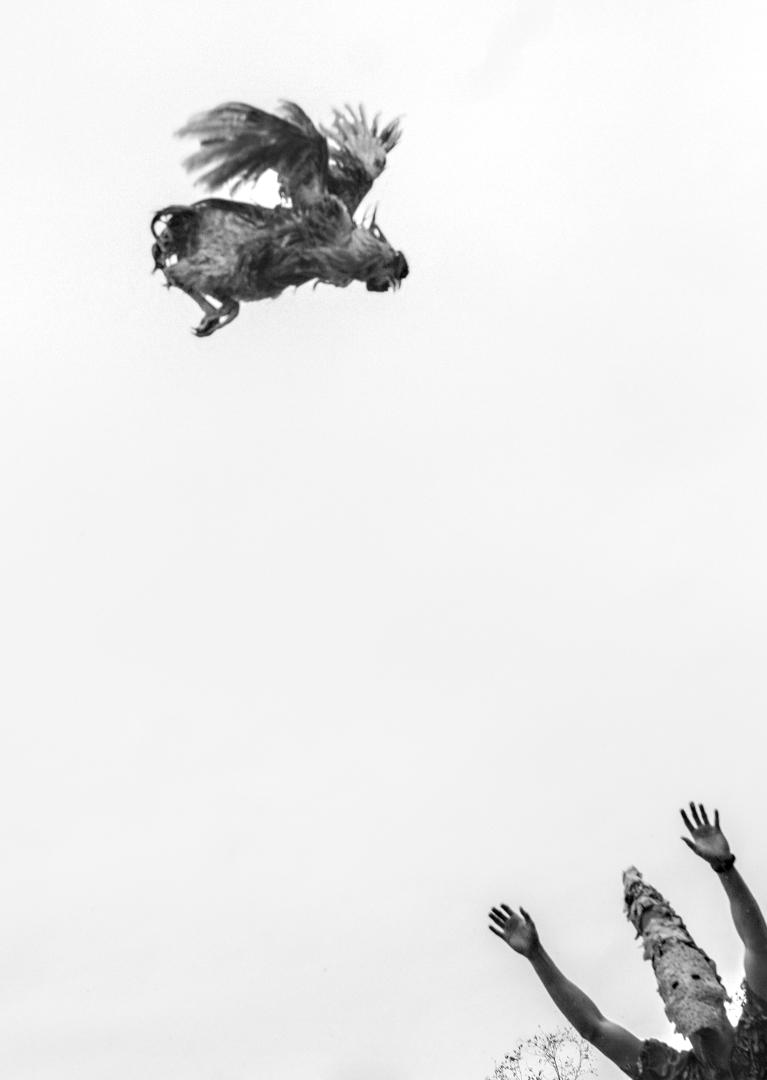 Lève les Mains  © Lucius A. Fontenot