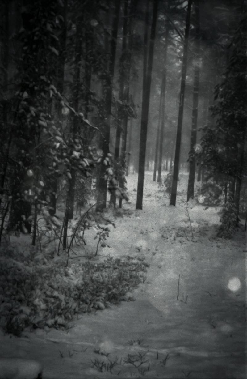 KOLEROVA_06(OUTLAND).JPG