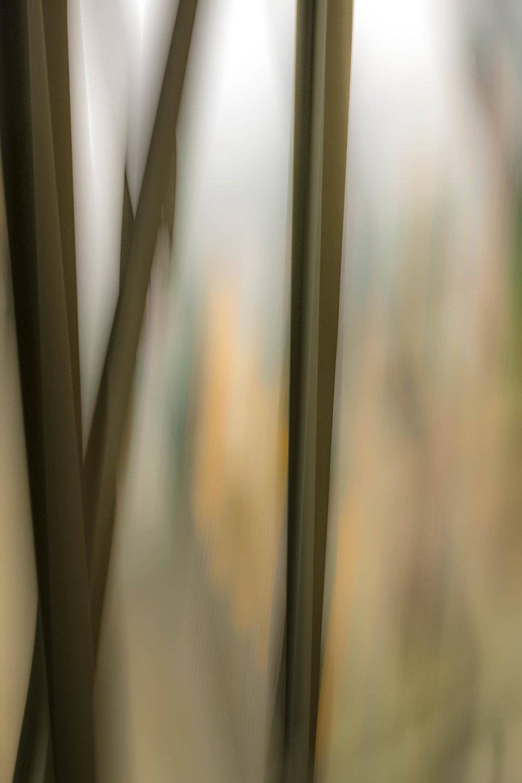Interiors 4 © Dennis Usdan