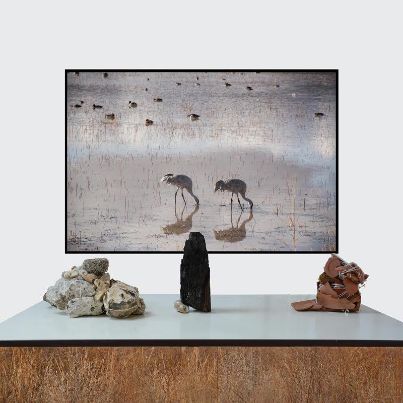 Mary Mattingly   Endgame , 2017  © Mary Mattingly, courtesy Robert Mann Gallery