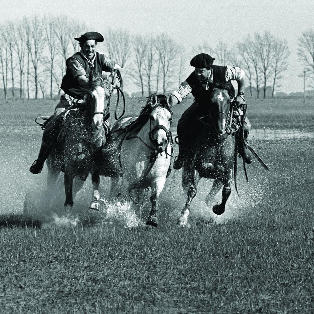 Grabbing a colt, Luján, Buenos Aires Province. Photo by ©Aldo Sessa.