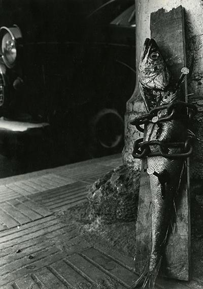 Jorge Brantmayer (Chile, 1954), Prisonero Encadenado, Santiago, 1979