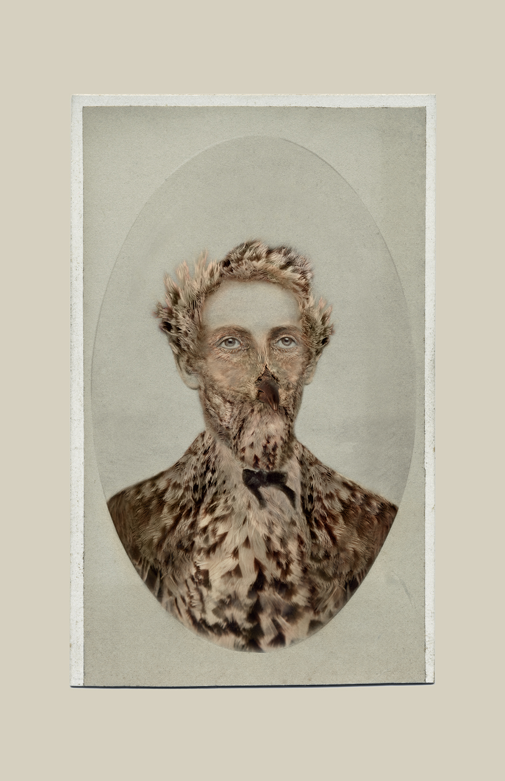 Aviary © Sara Angelucci   Sage Thrasher/endangered , 2013 C-print, 22 x 33.5 inches