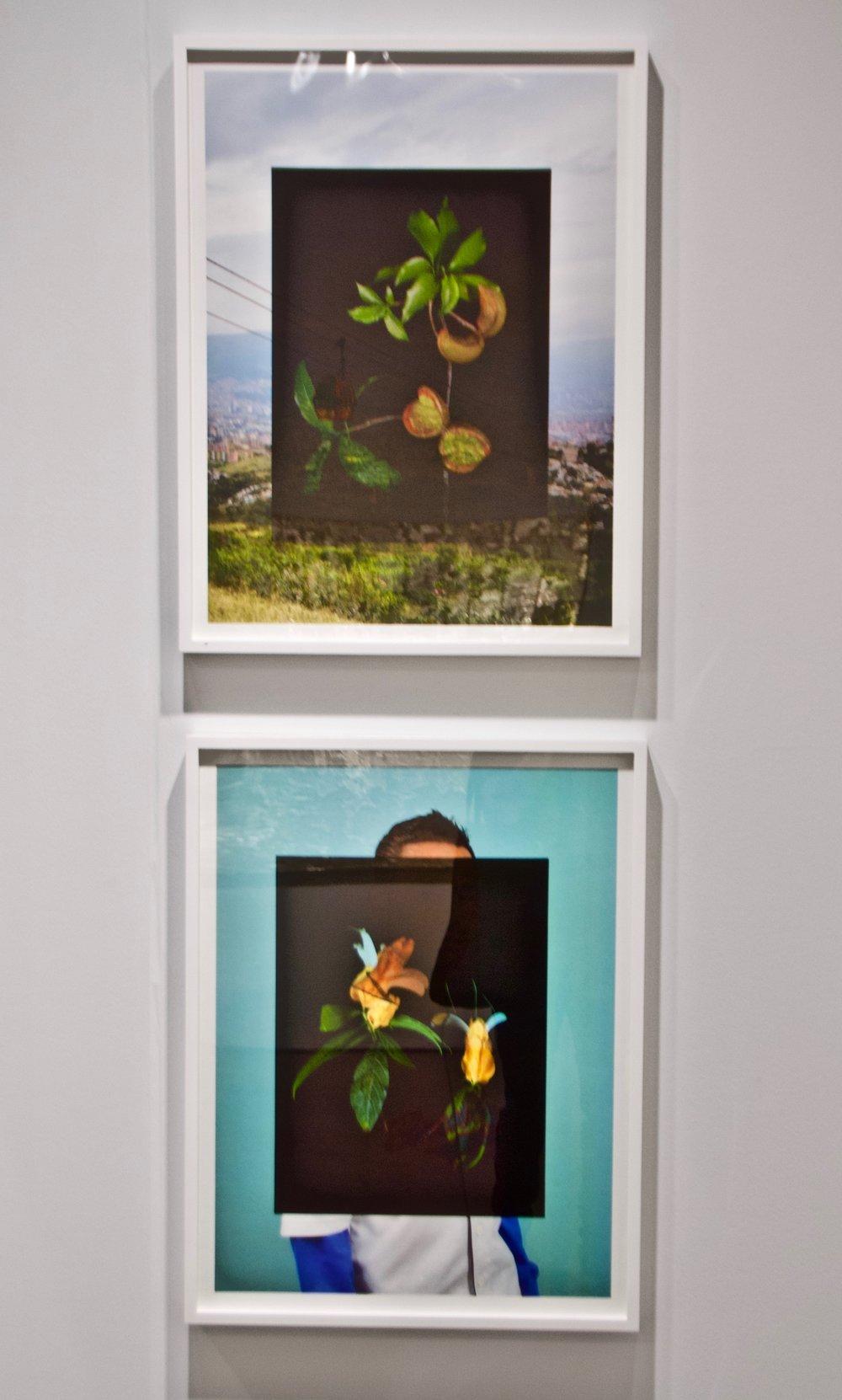 Photo of Corine Vermeulen's work © Ruben Natal-San Miguel
