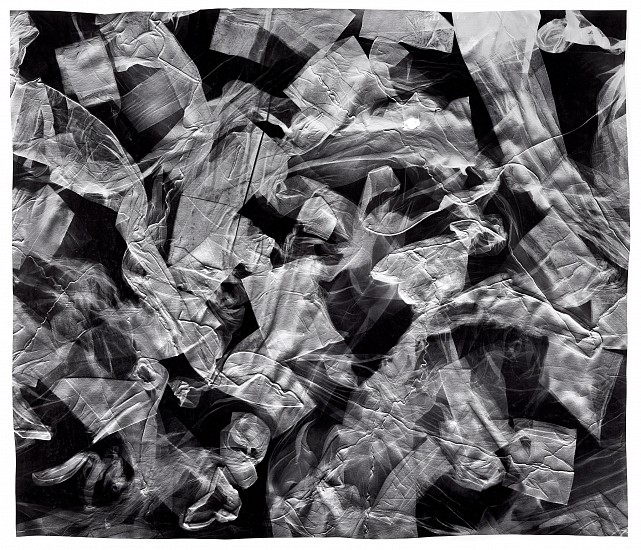 """Paint Me Bare (3),""   2018. Toned gelatin silver print; unique photogram with impression. Courtesy of Gitterman Gallery. © Klea McKenna"
