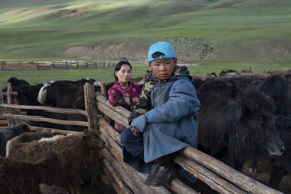 A Mongolian woman with her son and yak herd. Nomadic families roam the land in search of the tall grass for their animals. © Meghan Boody