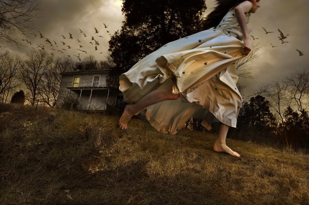 Winged Migration    © Tom Chambers, published by Unicorn Publishing Group 2018