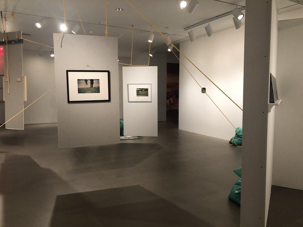 "Rachel Harrison ""Snake in the Grass"" (1997). Aluminum, drywall, wood, latex, acrylic, garbage bags, rope, chromogenic prints, inkjet print, FEGS chart, lamp, polystyrene, tape deck, bottled water, snakeskin, shovel, baking sheet, olive pits, cigar, and hunting traps."